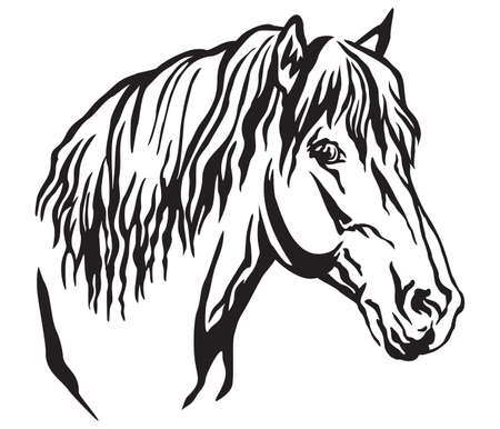 Decorative portrait in profile of beautiful horse with long mane, isolated vector illustration in black color on white background. Image for design and tattoo.