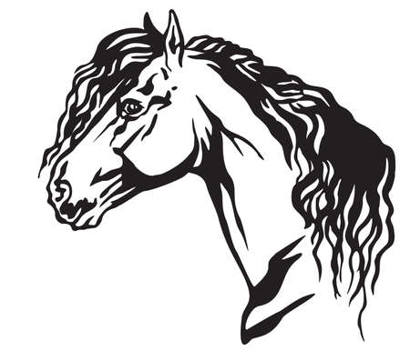 Decorative portrait in profile of beautiful Friesian horse with long mane, isolated vector illustration in black color on white background. Image for design and tattoo.