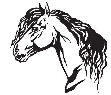 Ritratto decorativo nel profilo del bellissimo cavallo frisone con lunga criniera, illustrazione vettoriale isolata in colore nero su sfondo bianco. Immagine per design e tatuaggio.