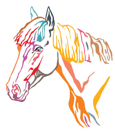 Colorful decorative portrait in profile of beautiful horse with long mane, vector illustration in different colors isolated on white background. Image for design and tattoo.