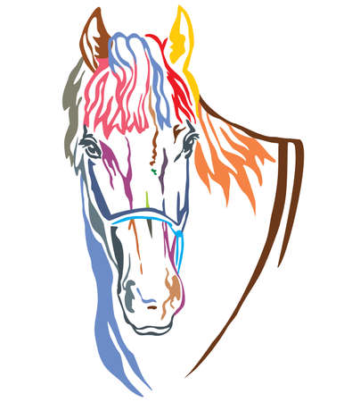 Colorful decorative portrait of beautiful horse with long mane, vector illustration in different colors isolated on white background. Image for design and tattoo.