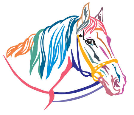 Colorful decorative portrait in profile of beautiful horse in  bridle with long mane, vector illustration in different colors isolated on white background. Image for design and tattoo. Illusztráció