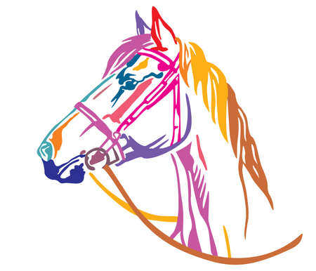 Colorful decorative portrait in profile of beautiful horse in  bridle with long mane, vector illustration in different colors isolated on white background. Image for design and tattoo. Çizim