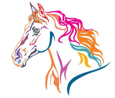 Ritratto decorativo colorato nel profilo del bellissimo cavallo in corsa con lunga criniera, illustrazione vettoriale in diversi colori isolati su sfondo bianco. Immagine per design e tatuaggio.