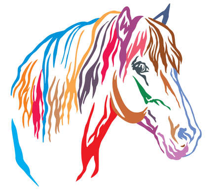 Colorful decorative portrait in profile of beautiful horse with long mane, vector illustration in different colors isolated on white background. Image for design and tattoo. Banque d'images - 112400076