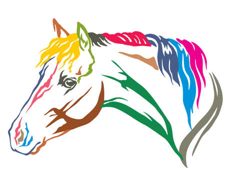 Colorful decorative portrait in profile of beautiful Welsh Pony with long mane, vector illustration in different colors isolated on white background. Image for design and tattoo.