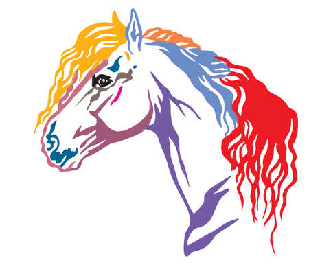 Colorful decorative portrait in profile of beautiful Friesian horse with long mane, vector illustration in different colors isolated on white background. Image for design and tattoo.