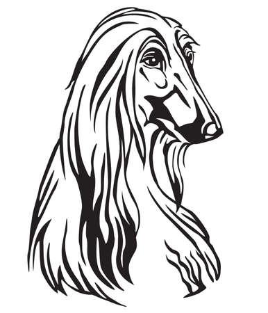 Dekoratives Porträt von Dog Afghan Hound, Vektor isolierte Illustration in schwarzer Farbe auf weißem Hintergrund. Bild für Design und Tätowierung.