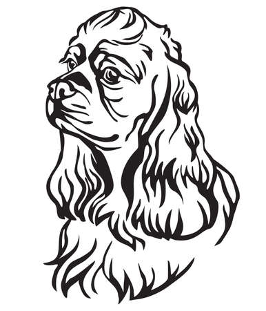 Decorative portrait of Dog American Cocker Spaniel, vector isolated illustration in black color on white background. Image for design and tattoo.