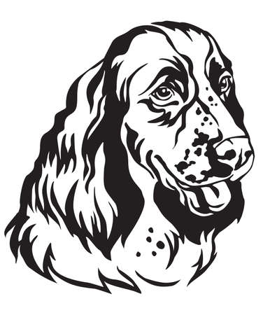 Decorative portrait of Dog English Springer Spaniel, vector isolated illustration in black color on white background. Image for design and tattoo.