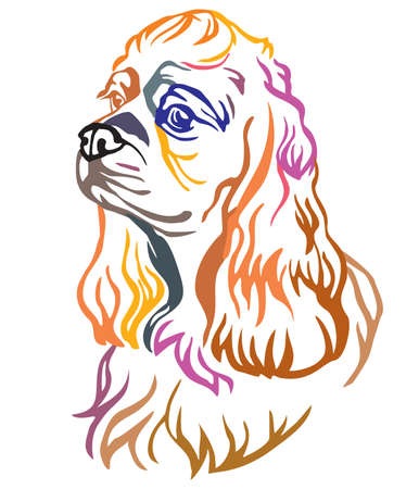 Colorful decorative portrait of Dog American Cocker Spaniel, vector illustration in different colors isolated on white background. Image for design and tattoo.