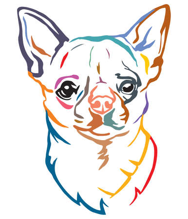 Colorful decorative portrait of Dog Chihuahua, vector illustration in different colors isolated on white background. Image for design and tattoo.