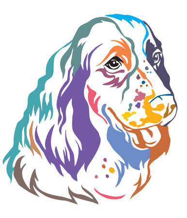Colorful decorative portrait of Dog English Springer Spaniel, vector illustration in different colors isolated on white background. Image for design and tattoo.