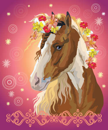 Vector colorful illustration. Portrait of pinto horse with different flowers in mane isolated on pink gradient background with decorative ornament and circles. Image for art and design