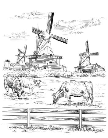 Dibujo a mano vectorial Ilustración de molino de agua en Amsterdam (Países Bajos, Holanda). Hito de Holanda. Molino de agua y vacas pastando en la pradera. Vector ilustración de dibujo a mano en color negro aislado sobre fondo blanco.
