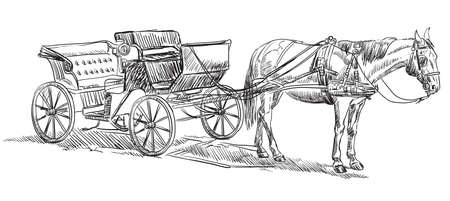 Vector hand drawing Illustration horse-drawn carriage standing in profile. Monochrome vector hand drawing sketch illustration in black color isolated on white background.