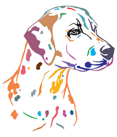 Colorful decorative outline portrait of Dog Dalmatian looking in profile, vector illustration in different colors isolated on white background. Image for design and tattoo. Иллюстрация