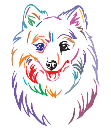 Colorful decorative outline portrait of Dog Japanese Spitz, vector illustration in different colors isolated on white background. Image for design and tattoo.