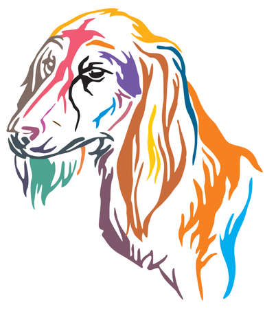 Colorful decorative outline portrait of Dog Saluki, vector illustration in different colors isolated on white background. Image for design and tattoo. Illustration