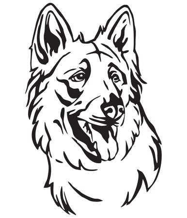 Decorative outline portrait of Dog Berger Blanc Suisse in profile, vector illustration in black color isolated on white background. Image for design and tattoo. Stock Vector - 119456132