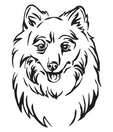 Decorative outline portrait of Dog Japanese Spitz, vector illustration in black color isolated on white background. Image for design and tattoo. Illusztráció