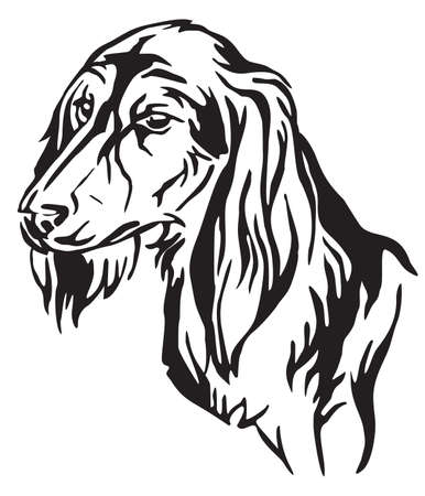 Decorative outline portrait of Dog Saluki in profile, vector illustration in black color isolated on white background. Image for design and tattoo.