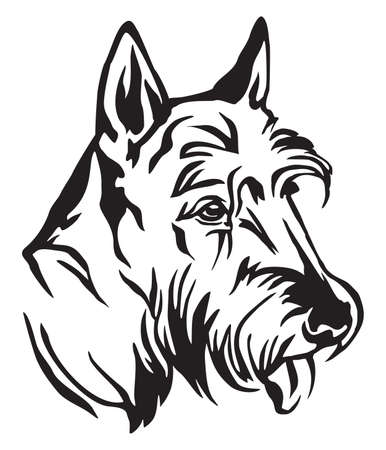 Decorative outline portrait of Dog Scottish Terrier in profile, vector illustration in black color isolated on white background. Image for design and tattoo.