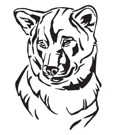 Decorative outline portrait of Dog Shiba Inu, vector illustration in black color isolated on white background. Image for design and tattoo.  イラスト・ベクター素材