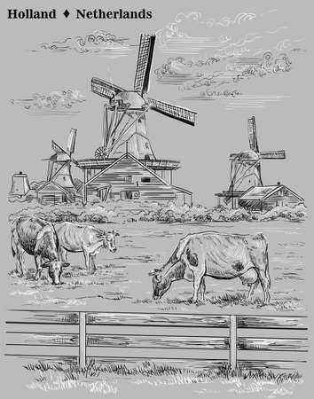 Vector hand drawing illustration of watermills in Holland, Netherlands. Watermill and cows grazing on the meadow. Vector sketch hand drawing illustration in black and white colors isolated on grey background.