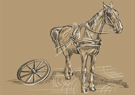 Vector hand drawing Illustration horse standing in profile with cart wheel. Monochrome vector hand drawing sketch illustration in black and white colors isolated on beige background. Illustration