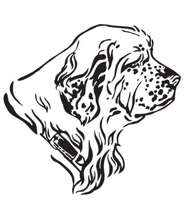 Decorative outline portrait of Dog Clumber Spaniel looking in profile, vector illustration in black color isolated on white background. Image for design and tattoo.