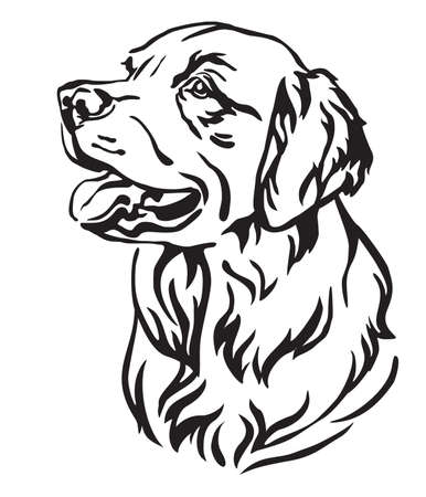 Decorative outline portrait of Dog Golden Retriever looking in profile, vector illustration in black color isolated on white background. Image for design and tattoo.