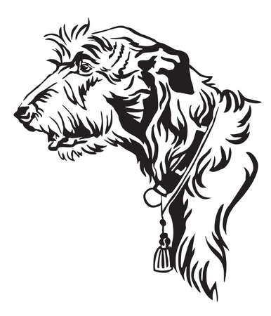 Decorative outline portrait of Dog Irish Wolfhound looking in profile, vector illustration in black color isolated on white background. Image for design and tattoo.