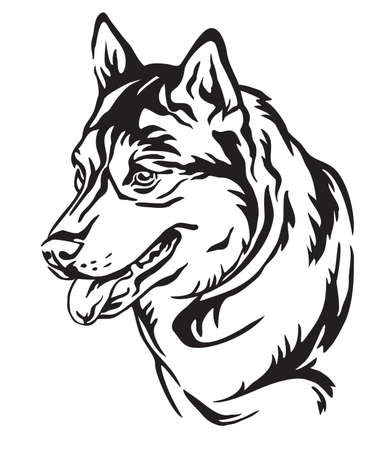 Decorative outline portrait of Dog Siberian Husky looking in profile, vector illustration in black color isolated on white background. Image for design and tattoo.