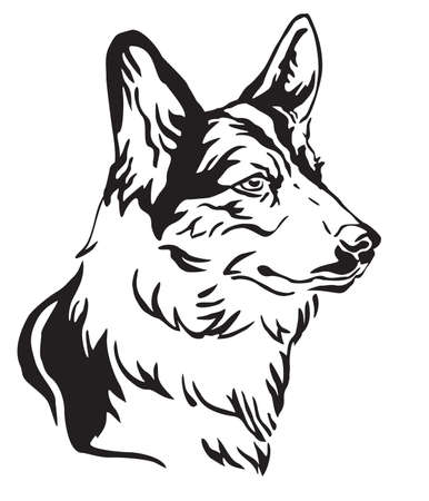 Decorative outline portrait of Dog Welsh Corgi looking in profile, vector illustration in black color isolated on white background. Image for design and tattoo.