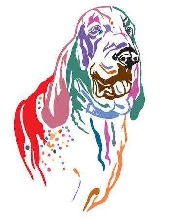 Colorful decorative outline portrait of Dog Bracco Italiano looking in profile, vector illustration in different colors isolated on white background. Image for design and tattoo. Illusztráció