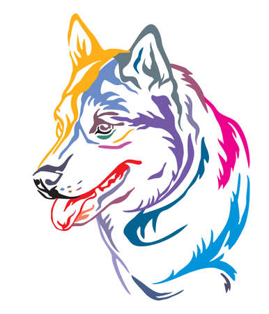 Colorful decorative outline portrait of Dog Siberian Husky looking in profile, vector illustration in different colors isolated on white background. Image for design and tattoo.