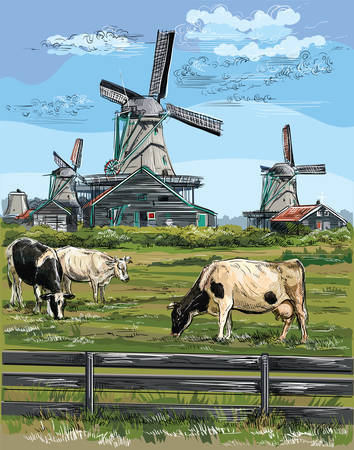 Vector hand drawing Illustration of watermill in Amsterdam (Netherlands, Holland). Landmark of Holland. Watermill and cows grazing on the meadow.Colorful vector engraving illustration. 向量圖像