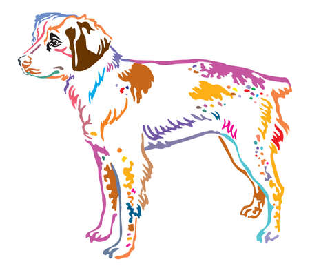 Colorful contour decorative portrait of standing in profile Brittany Dog, vector isolated illustration on white background