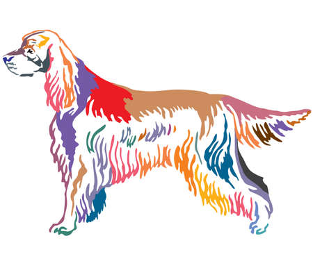 Colorful contour decorative portrait of standing in profile Gordon Setter Dog, vector isolated illustration on white background
