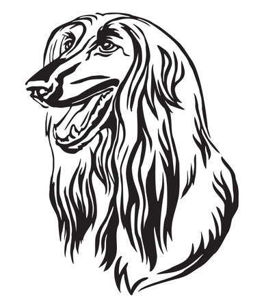 Decorative outline portrait of Dog Afghan Hound looking in profile, vector illustration in black color isolated on white background. Image for design and tattoo.