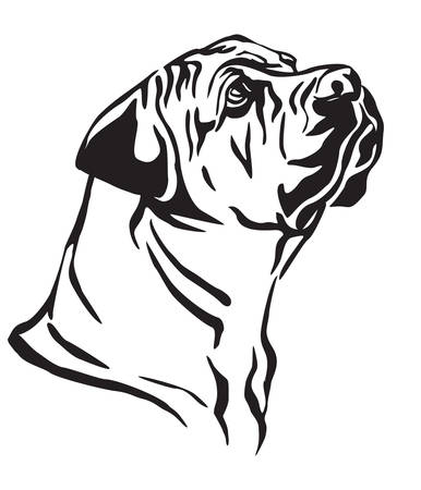 Decorative outline portrait of Boerboel Dog looking in profile, vector illustration in black color isolated on white background. Image for design and tattoo.