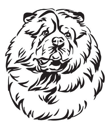 Decorative outline portrait of Chow Chow Dog looking in profile, vector illustration in black color isolated on white background. Image for design and tattoo.