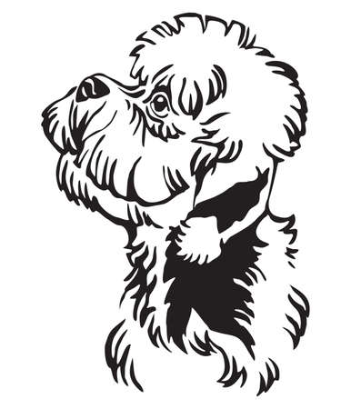 Decorative outline portrait of Dandie Dinmont Terrier Dog looking in profile, vector illustration in black color isolated on white background. Image for design and tattoo.