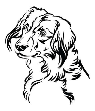 Decorative outline portrait of Nederlandse Kooikerhondje Dog looking in profile, vector illustration in black color isolated on white background. Image for design and tattoo. Ilustrace