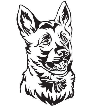 Decorative outline portrait of puppy German Shepherd Dog looking in profile, vector illustration in black color isolated on white background. Image for design and tattoo.