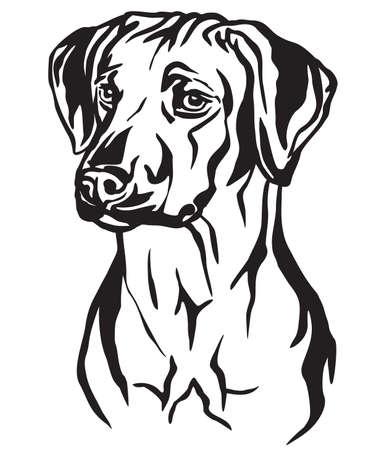 Retrato de contorno decorativo de perro Ridgeback de Rhodesia mirando de perfil, ilustración vectorial en color negro aislado sobre fondo blanco. Imagen para diseño y tatuaje.