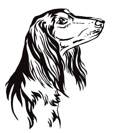 Decorative outline portrait of Saluki Dog looking in profile, vector illustration in black color isolated on white background. Image for design and tattoo. Illustration