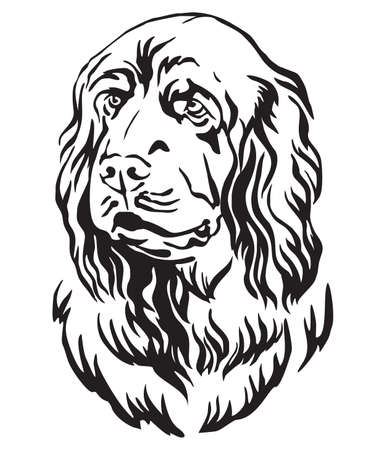 Decorative outline portrait of Sussex Spaniel Dog looking in profile, vector illustration in black color isolated on white background. Image for design and tattoo. Ilustração
