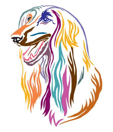 Colorato profilo decorativo ritratto di Afghan Hound Dog cercando di profilo, illustrazione vettoriale in diversi colori isolati su sfondo bianco. Immagine per design e tatuaggio.